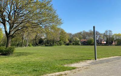 Parkour-Anlage im Schwingbodenpark