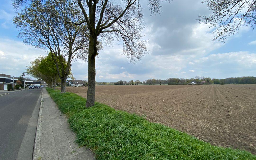 Fläche für das Neubaugebiet Färberstraße